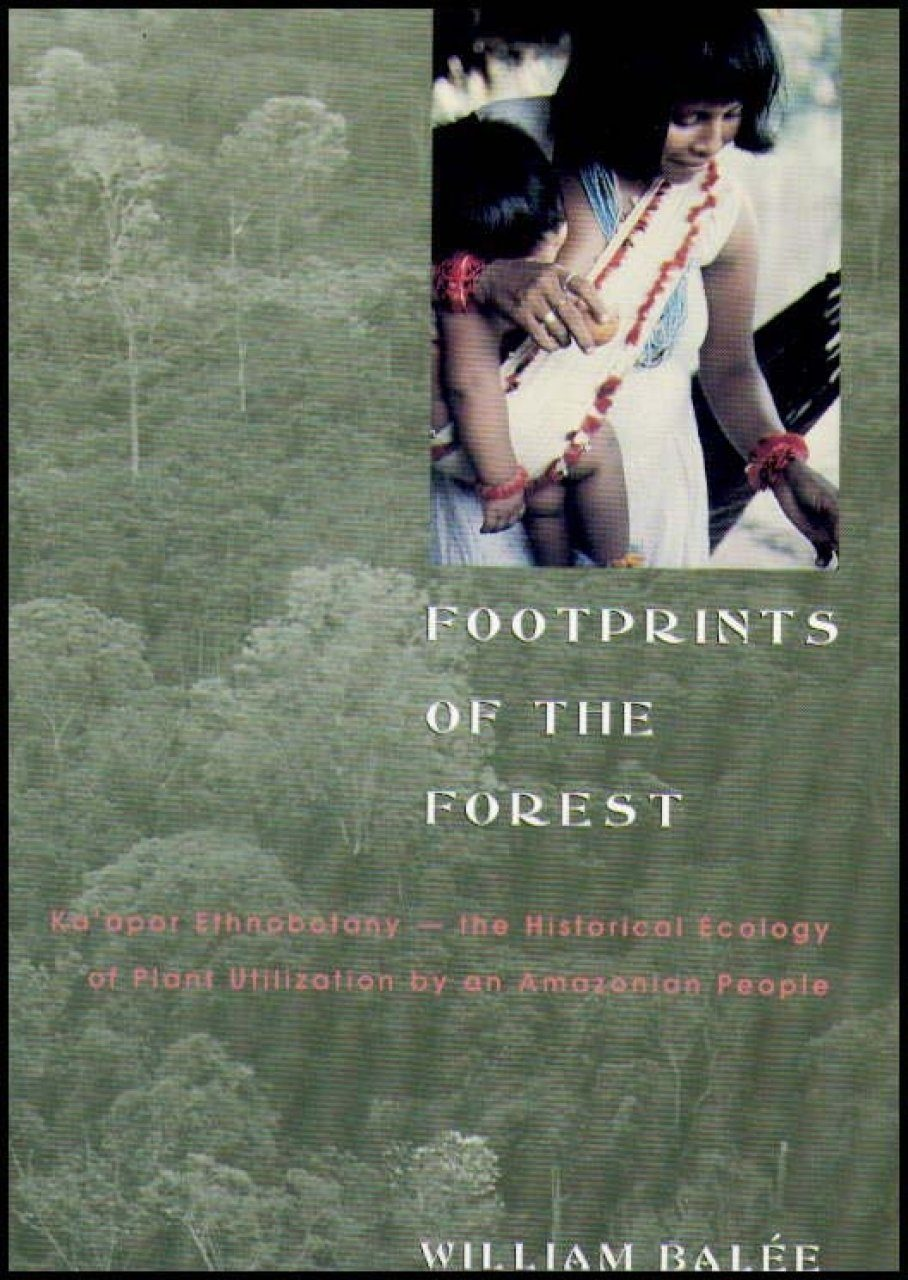 Footprints of the Forest