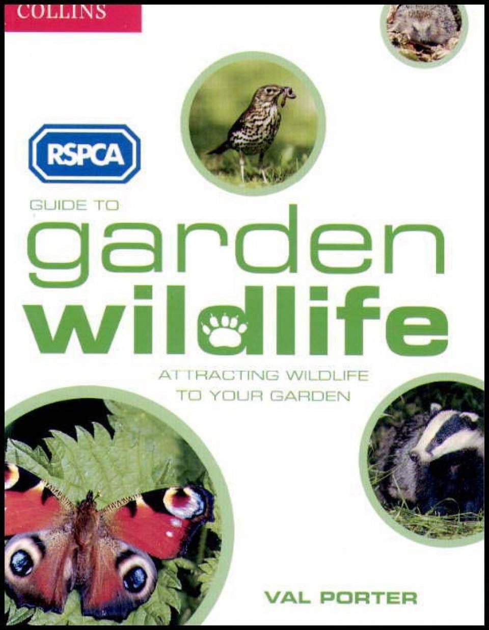 RSPCA Guide to Garden Wildlife